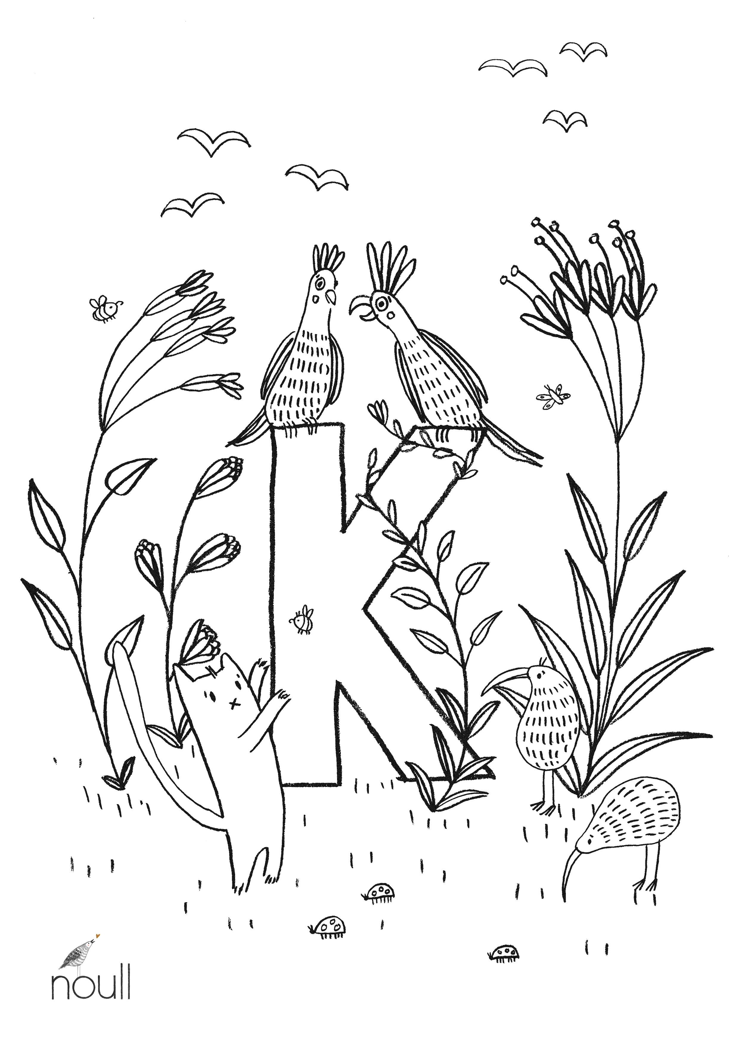 Ausmalbild K Wie Kakadu Von Noull Freubündel