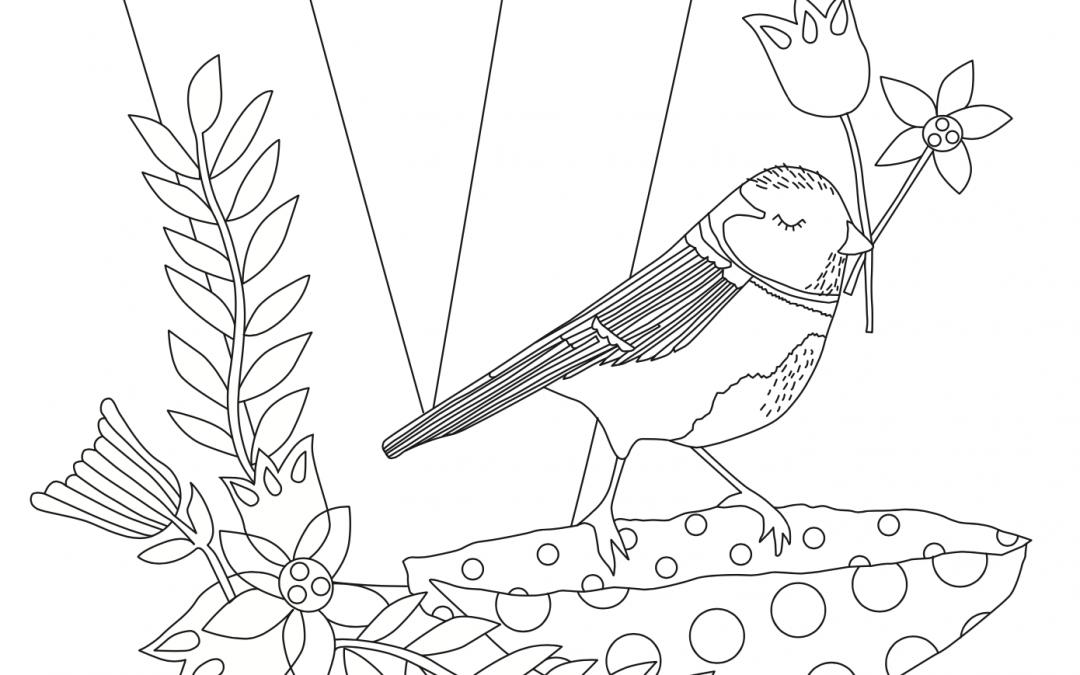 Ausmalbild V wie… Vogel von Kerstin Ax Illustration