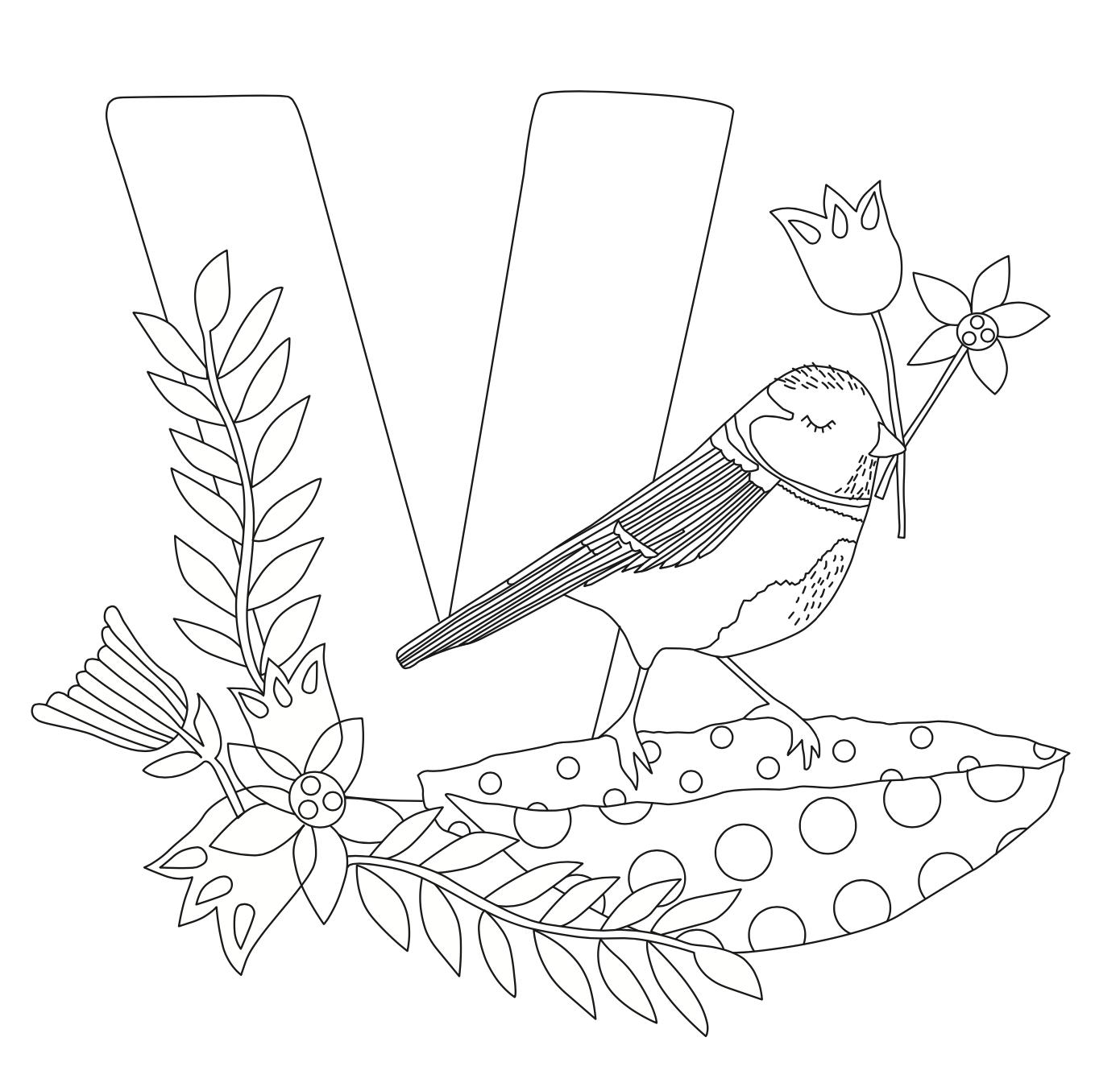 Ausmalbild V wie Vogel von Kerstin Ax Illustration - Freubündel