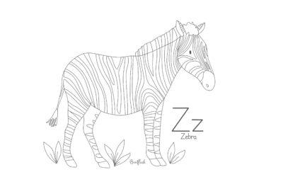 Ausmalbild Z wie… Zebra von Buntfleck